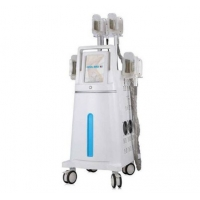 Quality Cryo CoolSculpting Lipofreeze Machine Weight Loss Slimming Fat Reduce Device Professional Use for sale