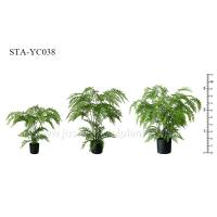 Quality Greenery Artificial Fern Tree Unprecedented Authenticity Black Potted Plant for sale