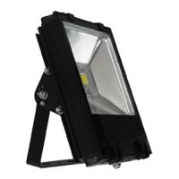 Quality 30W Epistar Warm White LED Flood Billboard Lighting 50 - 60hz for parking lots, gym for sale