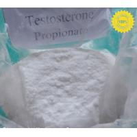 Best Injectable Steroid Compound Raw Testosterone Powder Propionate CAS 57-85-2 wholesale