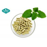 Quality Lemon Balm Melissa Officinalis Leaves Extract Capsules Natural Relaxation & Stress Management for sale