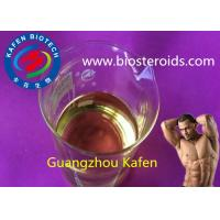 Quality 250mg/ml Muscle Injectable Anabolic Steroids Test Pp Testosterone Phenylpropionate for sale