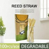 Quality 100% Biodegradable / Compostable / Disposable/Eco Friendly Reed Straws Drinking Straw,Bamboo /paper/reed /wheat Straw for sale