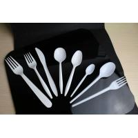 Quality Biodegradable Plastic Spoon for sale