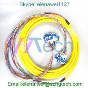 Best Singlemode/Multimode 12Core Fiber Optic Cable, Fanout 0.9mm, SC/LC Type wholesale