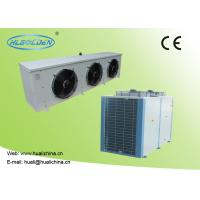 Quality Box Type Condensing Units For Cold Storage Room Color Plate Air Cooler And Main Machine for sale