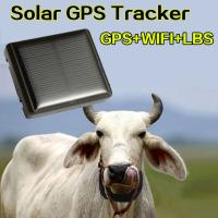 Quality Mini Solar Animal Gps Tracker Gps Tracking Device Long Battery Life Sim Card for sale