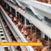 Quality Tianrui Hot Dip Glavanized Wire Mesh 5 Tiers Layer Chicken Cages Design for sale