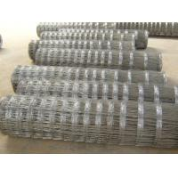 Quality Welded Square Field Wire Mesh Fencing 2.0 - 3.0mm With High Tensile Galvanized Steel for sale