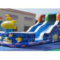 China Climbing Crawling Commercial Inflatable Slide Lovely 7x3.5x5m Eye Catcher Attractive on sale