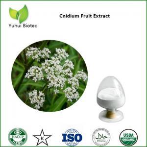 Quality cnidium extract,cnidium fruit extract,cnidium monnieri extract,osthole for sale