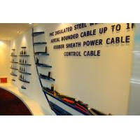 Jinshui Wire & Cable Group