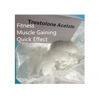 Quality Trestolone Acetate 6157-87-5 Muscle Building Strong Effects USP Standard for sale