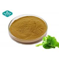 Quality Cosmetic Grade Centella Asiatica ( Gotu Kola ) High Purity Extract For Skin Care for sale