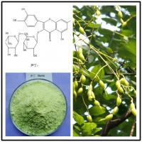 Quality sophora japonica extract rutin,sophora japonica rutin,rutin powder,natural rutin powder for sale
