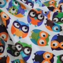 Quality 50m MOQ Customized Designs Print Supersoft Minky Plush Fleece Fabric for sale