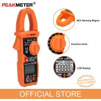 China Portable AC / DC Digital Clamp Meter Multimeter With NCV Detection High Performance on sale