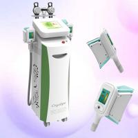 new product cryolipolysis / cryolipolysis freeze fat /beauty salon equipment cryolipolysis