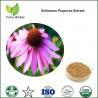 Buy cheap echinacea purpurea extract powder,echinacea purpurea herb extract,echinacea from wholesalers