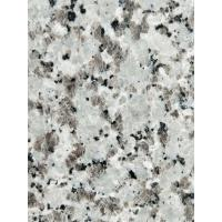 Quality Decorative Granite Stone Tiles / White Galaxy Granite Floor Tiles for sale