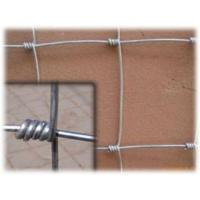 Quality Hot Dipped Galvanized Border Field Wire Fence With High Security for sale