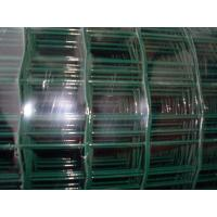 Quality Plastic Decorative Garden Border Fence , Electro Aviary Wire Mesh for sale