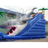 Quality Inflatable Shark slide Bait for sale