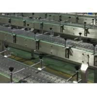 Quality Stable Performance Packing Conveyor Machine , Chain Plate Conveyor For Bottles for sale