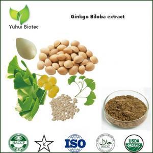 Quality ginkgo biloba extract,flavonoids ginkgo biloba extracts,ginkgo biloba extract powder for sale