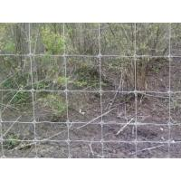 Quality Cattle Vinyl Coated Field Wire Fence , Stainless Steel Wire Netting for sale