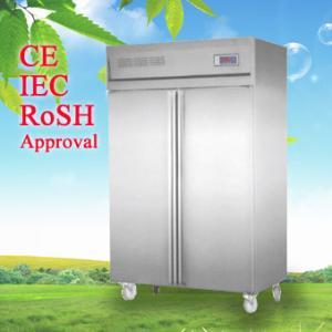 Quality Commercial Upright Freezer , Kitchen Refrigerator Freezer CE CB for sale