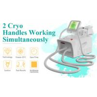 Quality 2019 hottest Professional portable fat freeze body slimming cryolipolysis lose weight machine for salon for sale