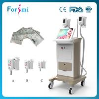 Buy cheap Cryolipolysis vacuum machine love handles removal freeze liposuction machine for sale from wholesalers