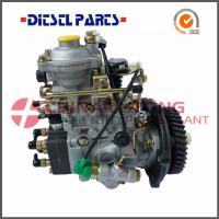 Quality Fuel Pumps NJ-VE4/11F1900L064 from China Diesel factory for sale
