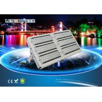 Quality AC85-265V Waterproof LED Flood Lights Outdoor Luminaire Tunnel Lamp Meanwell Driver for sale