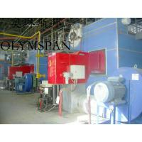 Quality Low Pressure Horizontal Heating Thermal Gas Oil Fired Boiler , High Temperature for sale