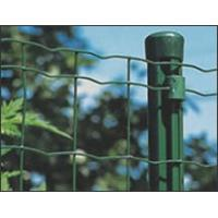 Quality Standard Patterns PVC Coated  electro galvanized Fencing Wire Mesh In Rolls for sale