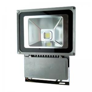 Quality FL22100 AC220V/100W No UV or IR Led Landscape Lighting Fixtures with Bridgelux Chip for sale