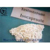 Quality Muscles Increasing Raw Test Powder , Testosterone Isocaproate 15262-86-9 white powder for sale