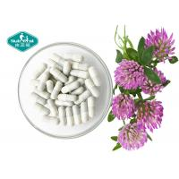 Quality Red Clover Extract ( Trifolium Pratense ) Capsules for Menopause Support for sale