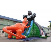 Quality King Kong Fight with Dinosaur Giant Slide for sale
