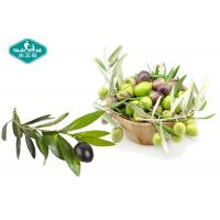 Quality Olive Leaf Extract Capsules High Strength Natural Antioxidant for sale