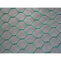 Buy Hot Dipped Galvanized Chicken Wire Mesh , 50mm 2'' Bird Cage Wire Mesh at wholesale prices