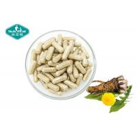 Buy cheap Dandelion Root Extract Capsules Supports the Liver and Gallbladder from wholesalers