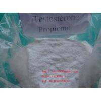 Best Testosterone propionate 57-85-2 Injectable Steroid Compound wholesale