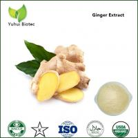 Quality gingerol 5%,ginger powder extract,ginger dry extract,ginger rhizome extract powder for sale