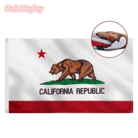 Quality Outdoor USA State 90x150cm Rectangle Banner Flags for sale