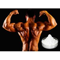 Quality Sustanon 200mg/ml Muscle Gain Steroids without Side Effects Oil based Injectable Testosterone Blend for sale