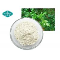 Quality Vine ( Rattan ) Tea Extract , Dihydromyricetin  ( DHM ) 98% , Ampelopsin for sale