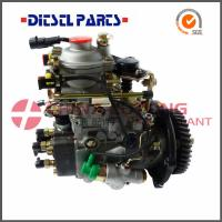 Quality Diesel Fuel Injection Pumps ADS-VE4/11E1800L019 from Diesel factory for sale